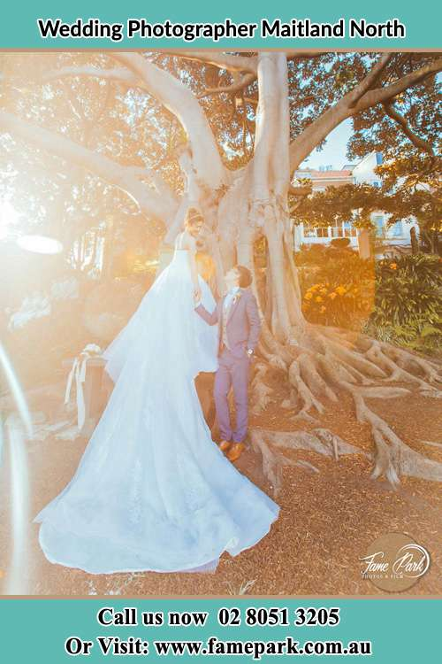 Cinematic photo of the Bride and the Groom beside the tree Maitland North NSW 2320