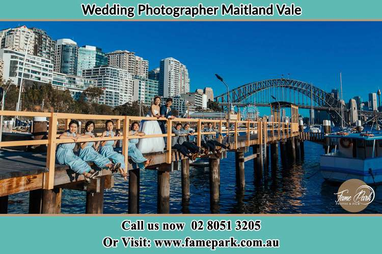 Photo of the Bride and the Groom together with the groom men and bridesmaids on the bridge Maitland Vale NSW 2320