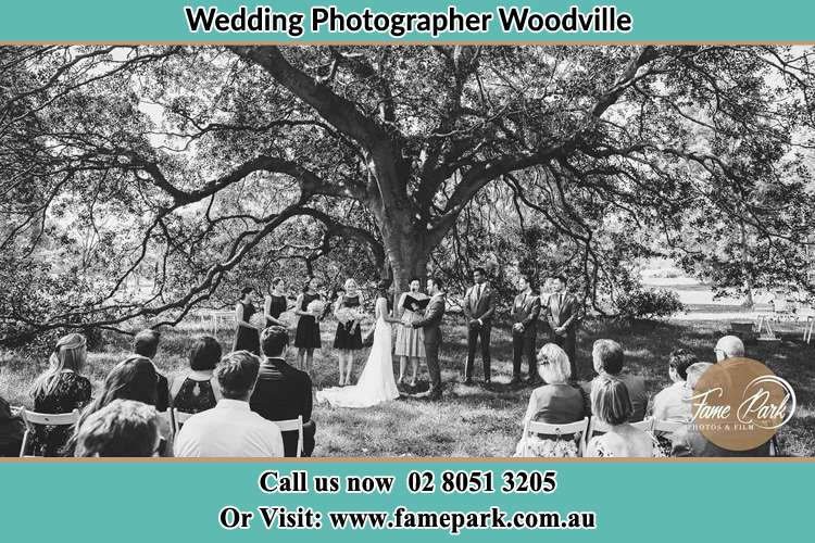 Photo of a wedding ceremony under the big tree Woodville